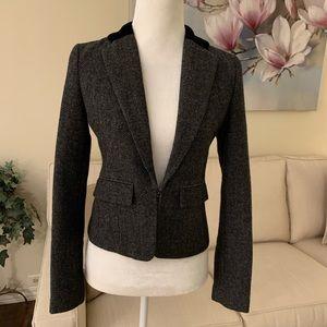 American Eagle Metallic Tweed Velvet Collar Blazer
